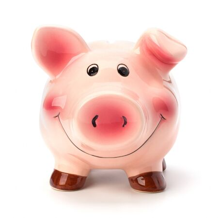 Lucky piggy bank isolated on white background photo