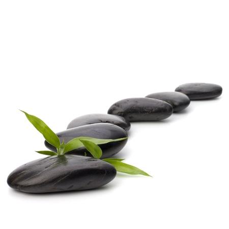 stone path: Zen pebbles path. Spa and healthcare concept.