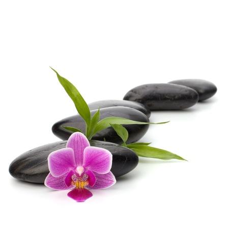 black pebbles: Zen pebbles path. Spa and healthcare concept.
