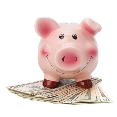 Money and piggy bank isolated on white background. Stock Photo - 10161223