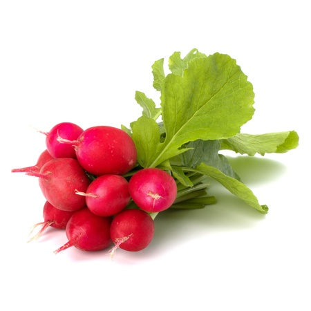 radish: Small garden radish isolated on white background
