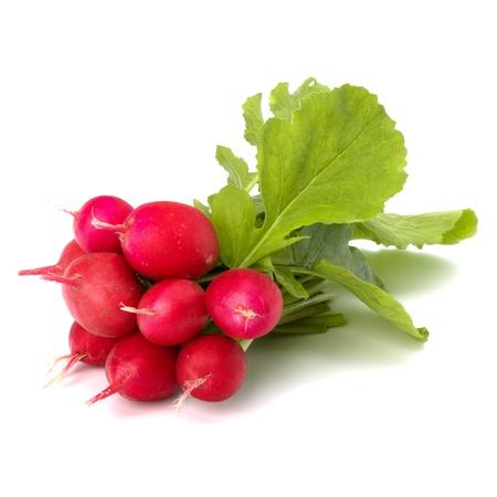 fascicle: Small garden radish isolated on white background