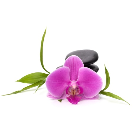 zen flower: Zen pebbles balance. Spa and healthcare concept.