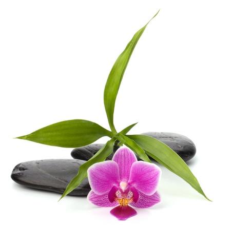 Zen pebbles path. Spa and healthcare concept. photo