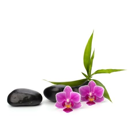 Zen chemin de cailloux. Spa et le concept de la santé. Banque d'images