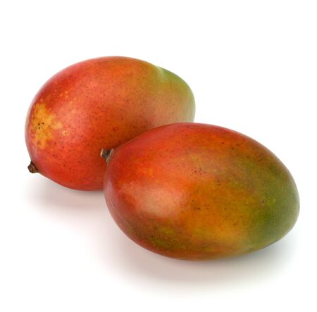 mango fruta: Fruta del mango aislado sobre fondo blanco Foto de archivo