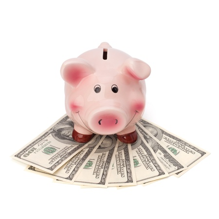 Money and piggy bank isolated on white background. Stock Photo - 10405826