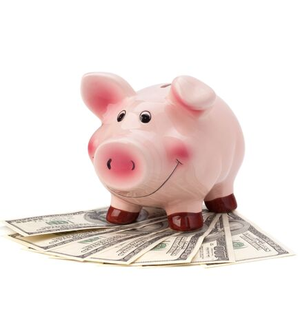 Money and piggy bank isolated on white background. Stock Photo - 10406454