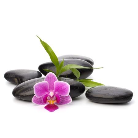 Zen pebbles path. Spa and healthcare concept. Stock Photo - 11062261