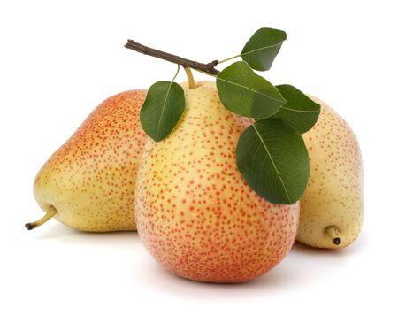 Pear fruits isolated on white background photo