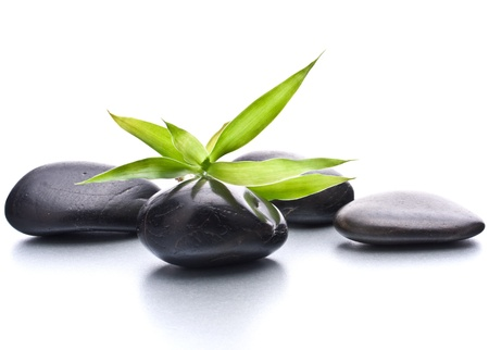 beauty spa: Zen pebbles. Stone spa and healthcare concept.