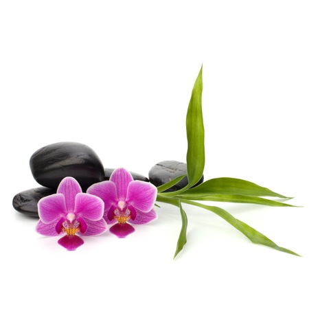 Zen pebbles balance. Spa and healthcare concept. Stock Photo - 13191288