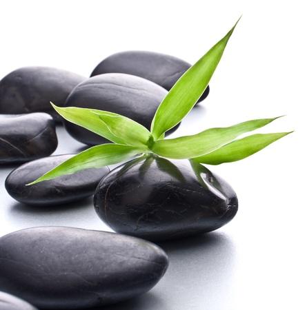 piedras zen: Piedras zen. Stone Spa y el concepto de atención médica.