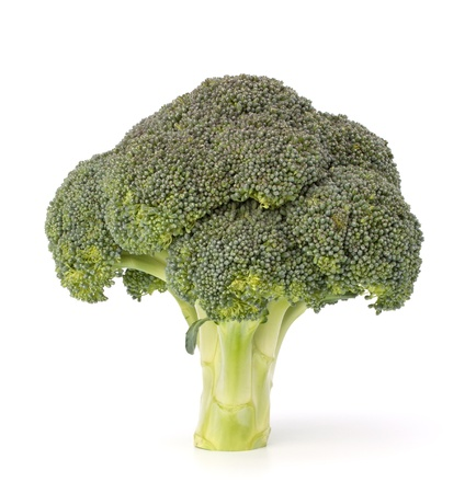 Broccoli vegetable isolated on white background Stock Photo - 13297451