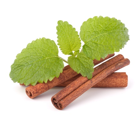 Cinnamon sticks and fresh mint leaf isolated on white background photo