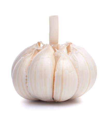 garlic bulb isolated on white background cutout Stock Photo - 13721659
