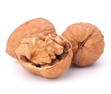 Circassian walnut isolated on white background photo