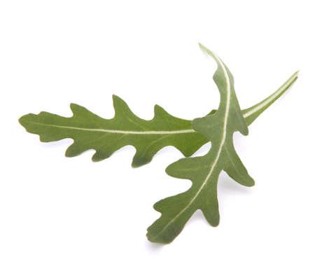 Sweet rucola salad or rocket lettuce leaves isolated on white background Stock Photo