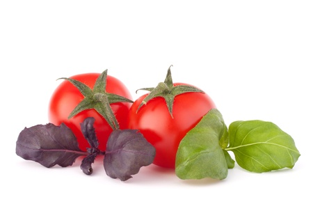 Cherry tomato and basil leaves still life isolated on white background cutout photo