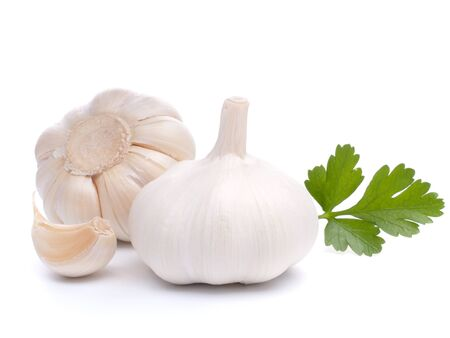 garlic bulb isolated on white background cutout Stock Photo - 14907602
