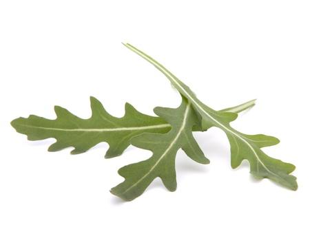 Sweet rucola salad or rocket lettuce leaves isolated on white background photo