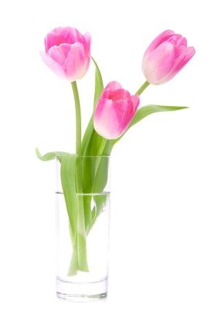 白い背景で隔離の花瓶でピンクのチューリップの花束 写真素材