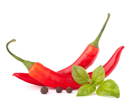 chilly: Hot red chili or chilli pepper and basil leaves still life isolated on white background cutout
