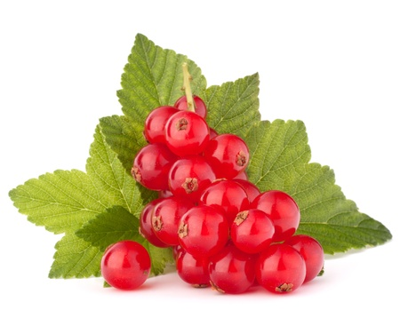 currants: Red currants and green leaves still life isolated on white background cutout