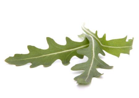 Sweet rucola salad or rocket lettuce leaves isolated on white background Stock Photo - 16040744