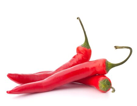 chilli: Hot red chili or chilli pepper isolated on white background cutout