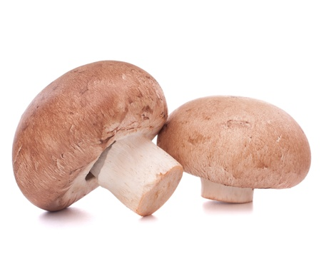 Brown champignon mushroom isolated on white background cutout photo