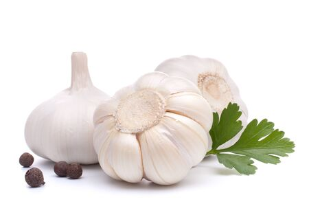 garlic bulb isolated on white background cutout photo