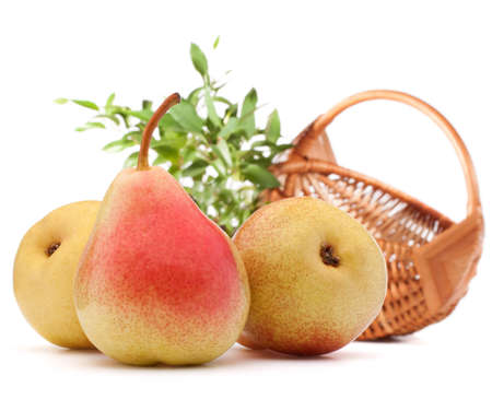 Pear fruit and wicker basket isolated on white background cutout. Autumn harvest concept. photo