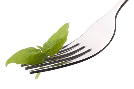 Fresh basil leaf  on fork isolated on white background cutout. Healthy eating concept. photo
