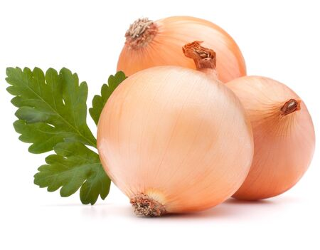 Onion vegetable bulb and parsley leaves still life isolated on white background cutout photo