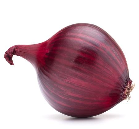 cebolla blanca: bulbo de la cebolla roja aislado en el fondo blanco recorte