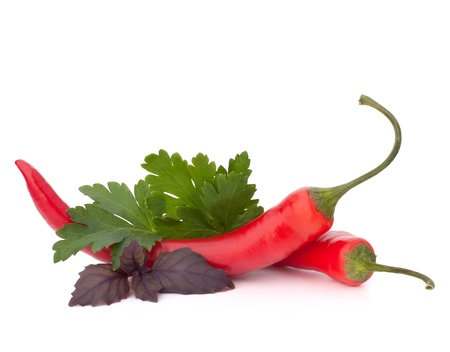 Hot red chili or chilli pepper and aromatic herbs leaves still life isolated on white background cutout photo