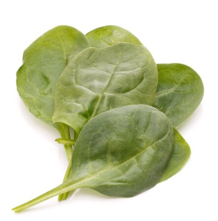 Spinach vegetables  isolated on white background cutout photo