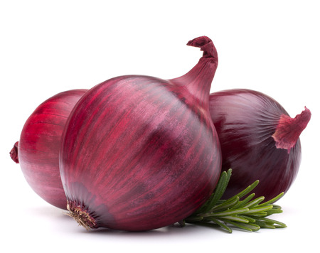 red onion and rosemary leaves still life  isolated on white background cutout