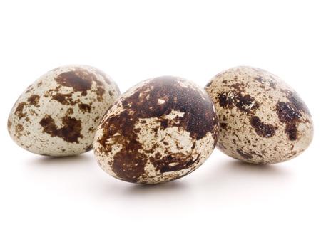 메추라기 달걀 흰색 배경 컷 아웃에 고립 스톡 콘텐츠 - 30045887
