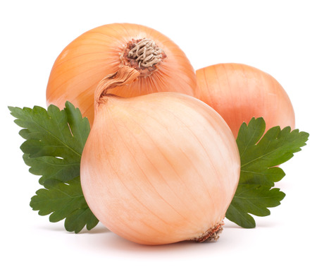 onion: Legumbre de bulbo de la cebolla y el perejil hojas todav�a vida aislada en el fondo blanco