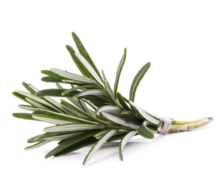 rosemary herb spice leaves isolated on white background cutout Banco de Imagens