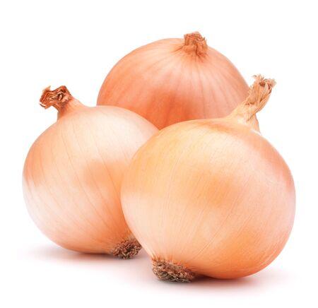 cebolla blanca: Bulbos vegetales cebolla de oro sobre fondo blanco recorte