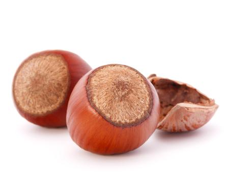 cobnut: hazelnut or filbert nut isolated on white background cutout