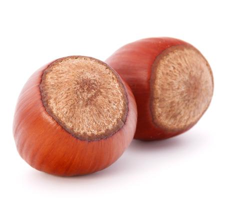 filbert: hazelnut or filbert nut isolated on white background