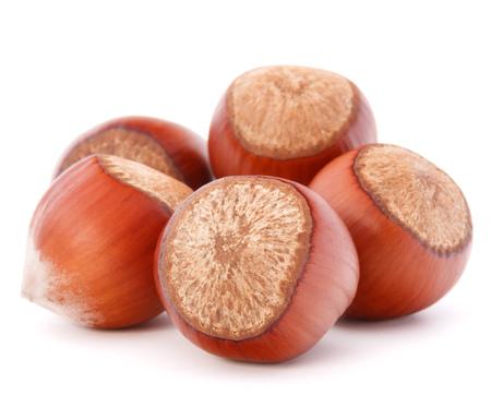filbert nut: hazelnut or filbert nut isolated on white background