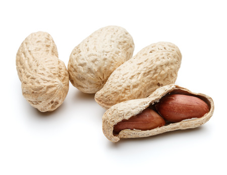 arachis: peanut pod or arachis isolated on white background cutout