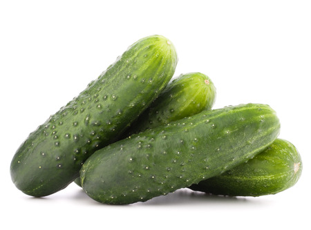 gherkin: Cucumber vegetable  isolated on white background cutout