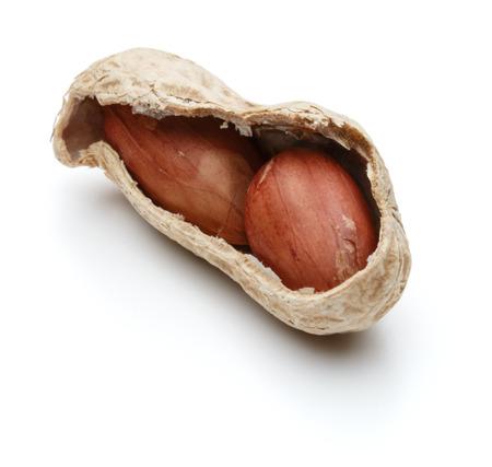 arachis: peanut pod or arachis isolated on white background