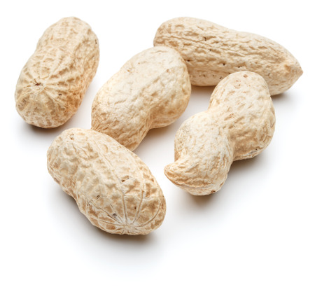 arachis: peanut pod or arachis isolated on white background